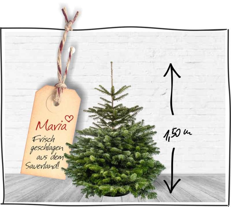 weihnachtsbaum online kaufen kostenloser versand. Black Bedroom Furniture Sets. Home Design Ideas