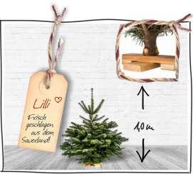 weihnachtsbaum onlineshop mit kostenlosem versand. Black Bedroom Furniture Sets. Home Design Ideas